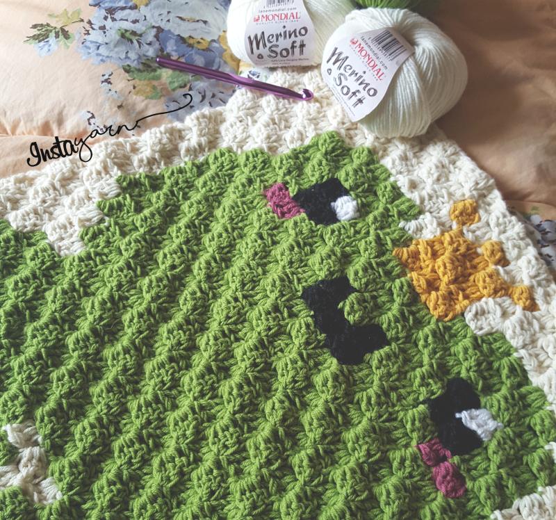 King Frog Baby Blanket – C2C Crochet